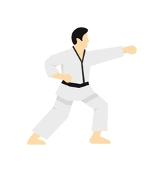 Karate fighter icon flat style vector