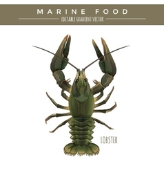 Lobster marine food vector