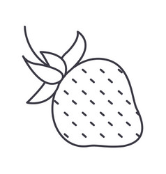 strawberry line icon sign on vector image