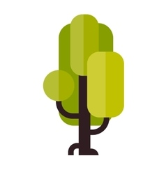 A tree in flat style vector