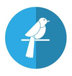 bird dove fauna fly shadow vector image