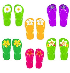 Flip flops with color flowers vector