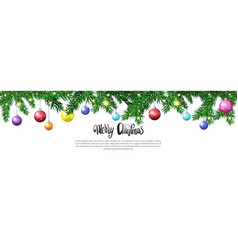 christmas tree branches with colorful balls vector image