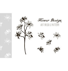 flower design art brush and pattern vector image vector image