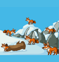 many foxes on snow mountain vector image
