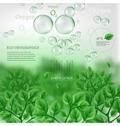02 Infographics Bio Tree vector image