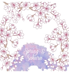 Background with sakura vector image