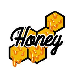 Color vintage honey emblem vector