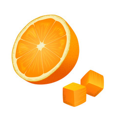 half of orange with two cubes isolated vector image vector image