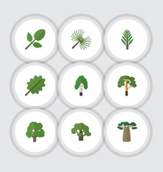 Flat icon bio set of wood rosemary tree and vector