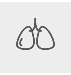 Lungs thin line icon vector image