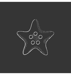 Starfish Drawn in chalk icon vector image vector image