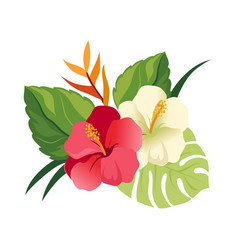 Beautiful hibiscus flowers and palm leaves vector