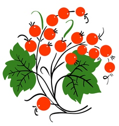Bunch of red currant ripe berry vector