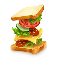 Exploded view of sandwich vector