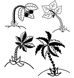 Palm trees collection vector