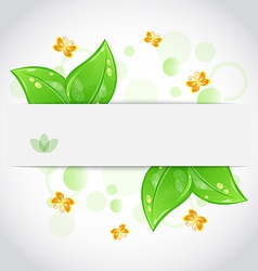 Eco green leaves with butterfly vector image
