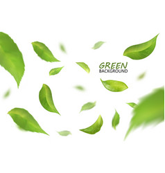 blurred fresh flying green leaves quality 3d vector image vector image