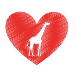 giraffe animal isolated icon vector image