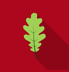 Oak leaf icon in flat style for web vector