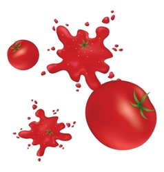 Splashes of red tomatoes on the wall vector