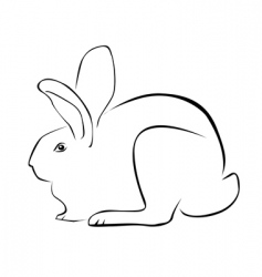 Tracing of a rabbit vector