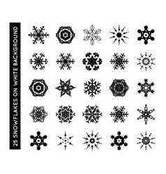 Collection of beautiful snowflakes vector image vector image