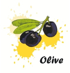 olive background vector image vector image