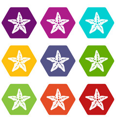 starfish icon set color hexahedron vector image