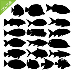 Fish silhouettes vector image vector image