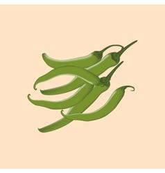 Green chili pepper icon vector