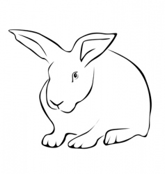 Tracing of a white rabbit vector