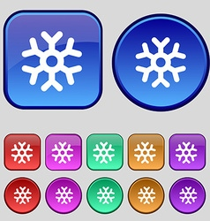 Snowflake icon sign a set of twelve vintage vector