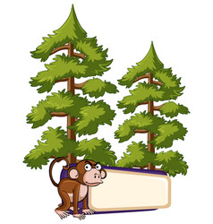 Banner template with monkey in pine forest vector