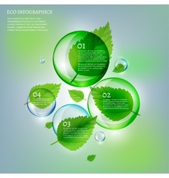 02 infographics leaves bubble copy vector
