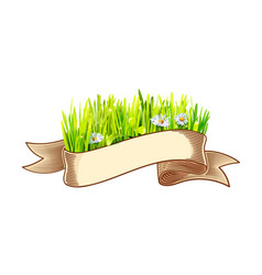Ribbon with green grass and chamomile vector