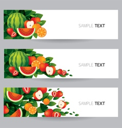 Mixed fruits banner vector