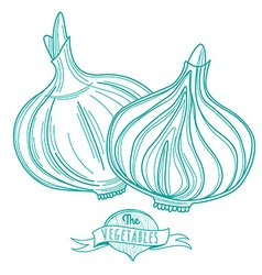 Outline hand drawn sketch of onion flat style thin vector