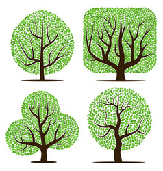 four trees with green leaves vector image vector image