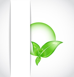 green leaves with bubble vector image
