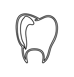 monochrome hand drawn contour of tooth vector image vector image