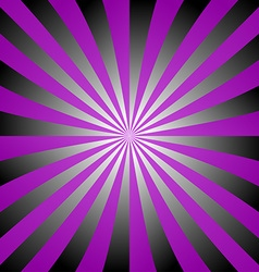 Purple black white ray burst design vector