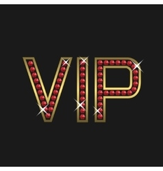 Vip members only vector