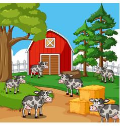 Cows in the farmyard vector
