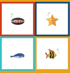 Flat icon sea set of scallop cachalot seafood vector