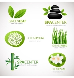 Natural signs with leaves flowers and grass vector