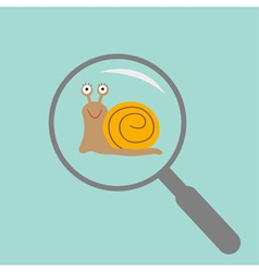 Snail insect under magnifier zoom lense flat vector