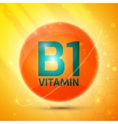 Vitamin b1 icon vector
