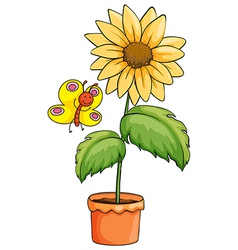 A sunflower and a butterfly vector image vector image