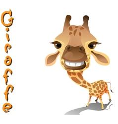 animal giraffe vector image